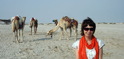 J and camels